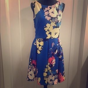 Women's Taylor Dress